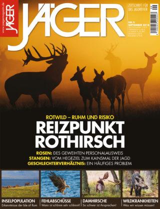 Reizpunkt Rothirsch